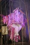 Vign_moulins_2007_012